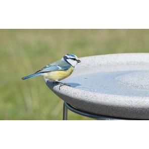 Vogeltränke Granicium® Ø 38 cm. Höhe 6,5cm